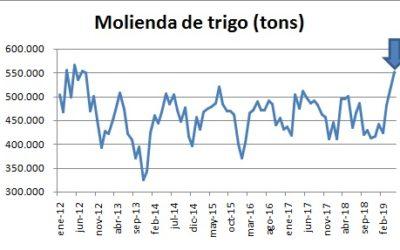 Acciones de control sobre la molinería ya blanquean 50.000 toneladas de trigo