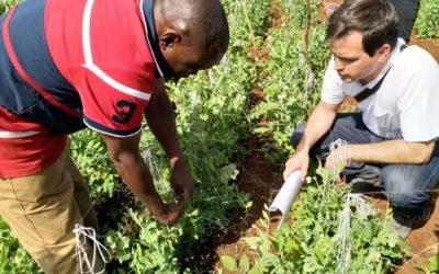 Rizobacter, otra empresa que apuesta al mercado africano