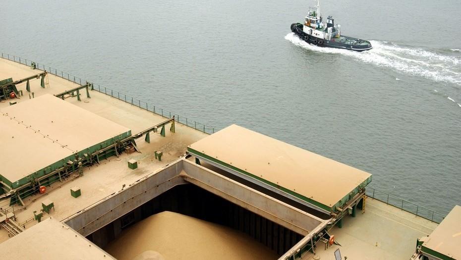 Complejo soja: hay un traspaso de biodiesel a aceite y harina a poroto en las exportaciones