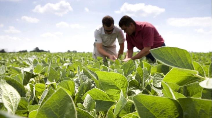 ¿Puede la soja ayudar a paliar la restricción externa de dólares rápidamente?
