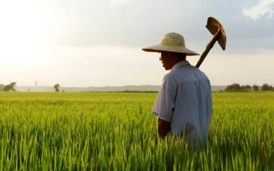 China y su enorme desafío en perspectiva